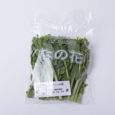 菜の花 150g 【神奈川】   jf