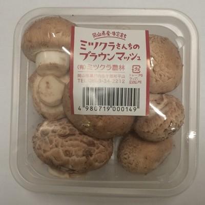 ブラウンマッシュルームカップ100g  【岡山】 mn