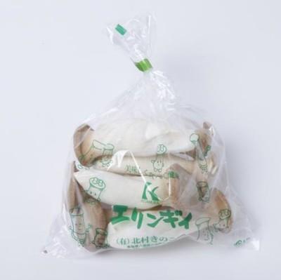 不揃いエリンギ 150g   【鳥取】 kk