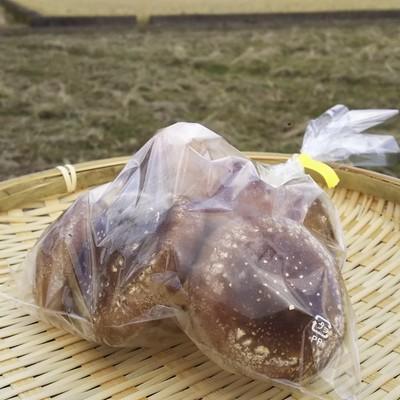 菌床椎茸(BS品) 150g   【京都】
